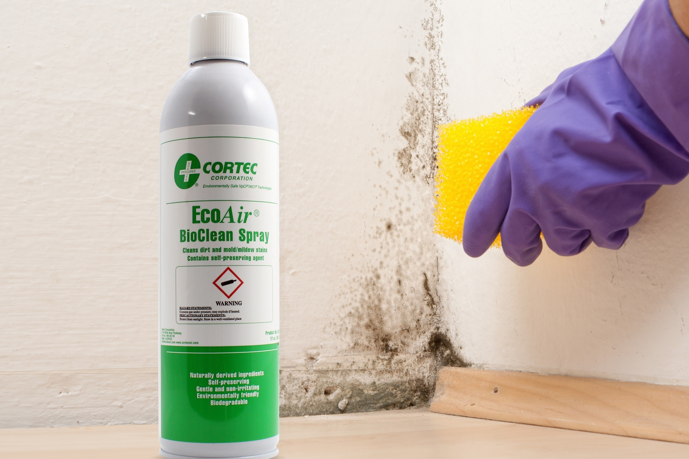 EcoAir BioClean Spray